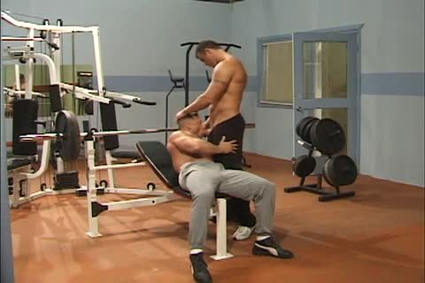 Muscle hunks gym sex