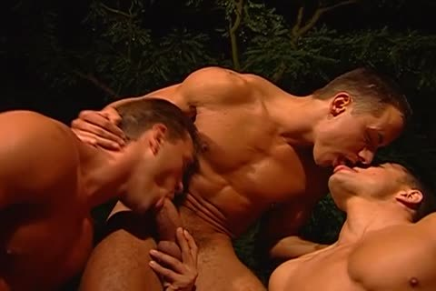 Steamy homosexual outdoors Three-some Goes attractive