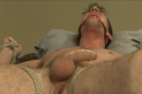 bdsm - Southern man acquires His weenie Edged.
