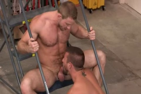 Muscle Bear ass rimming With cumshot