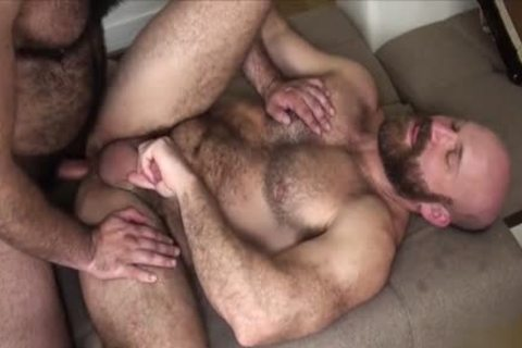 hirsute Bear bareback And sex semen flow