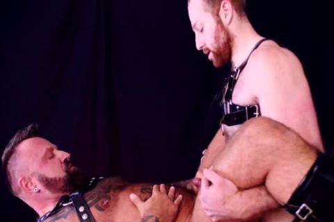 Sean Knight & Marc Angelo  Order And Swine